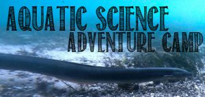 Aquatic Science Adventure Camp Logo