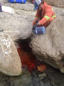 Figure 1: Dye injection into a recharge feature (swallet) within Onion Creek where surface water enters the subsurface through a small opening.